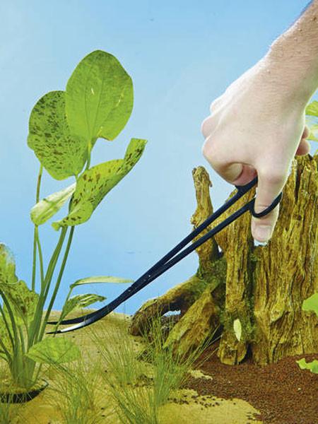 Pflanzen-Schere im Einsatz