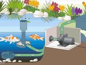pumpenkammer