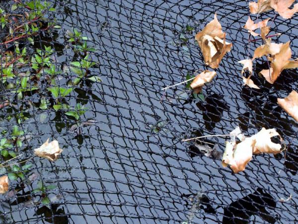 Cover Net von Velda