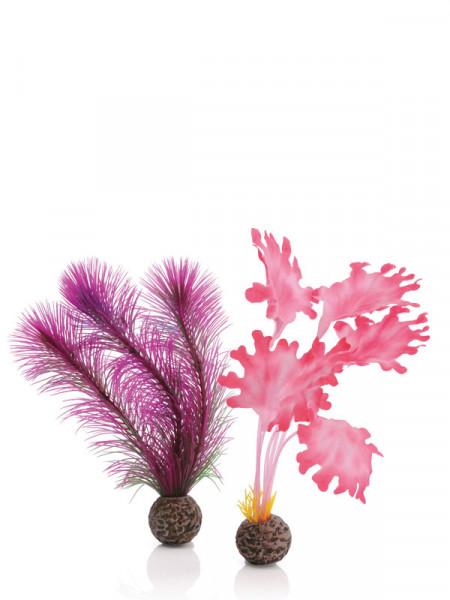 biOrb Seetang-Set pink klein