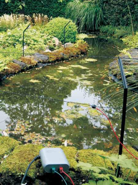 Pond Protector Der Gartenteich