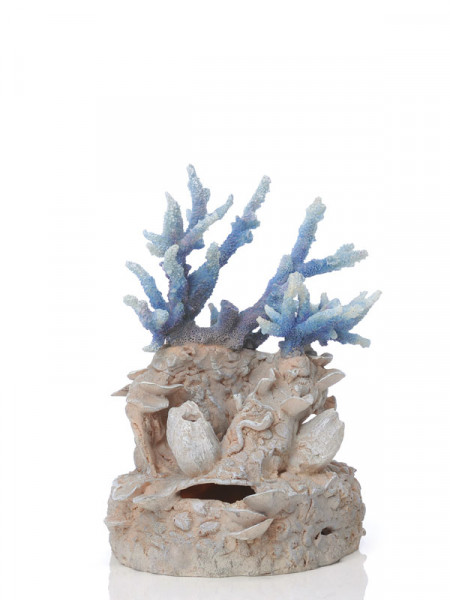 biOrb Korallenriff-Ornament blau