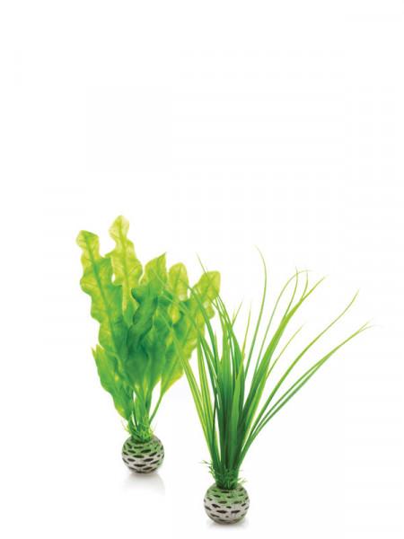 biOrb Pflanzen-Set grün klein