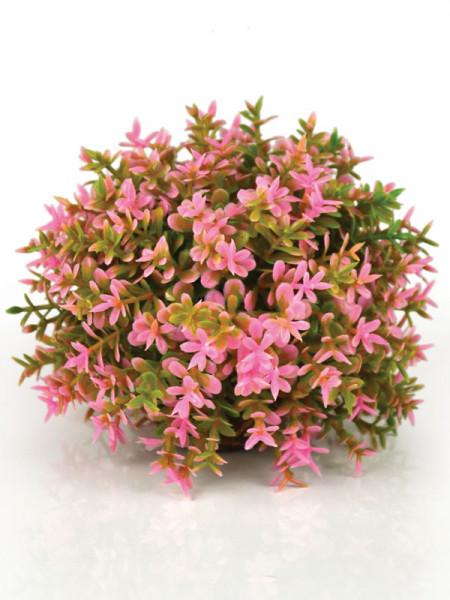 Blumenball pink