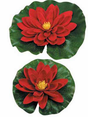 Dekor-Seerosen, rot (Art.Nr.1389424)