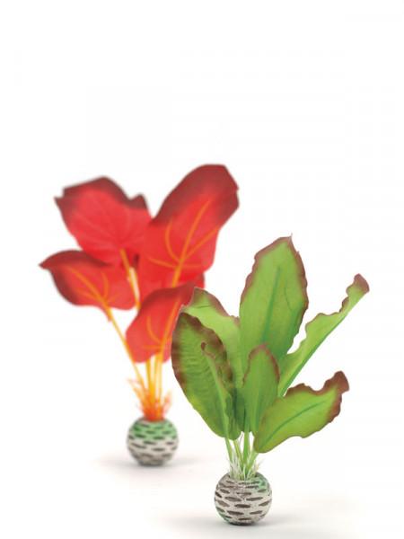 biOrb Seidenpflanzen-Set grün/rot klein