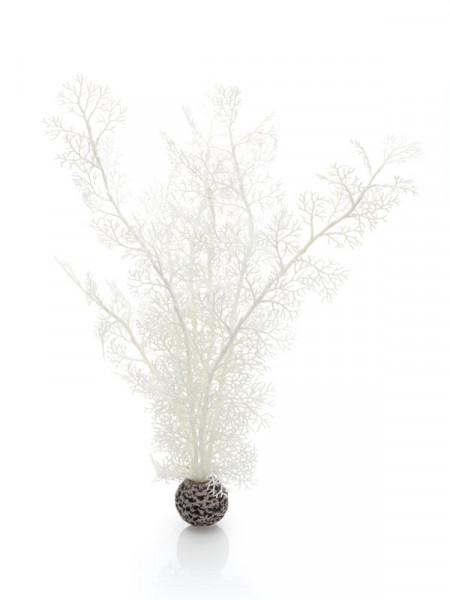 biOrb Hornkoralle gross weiß