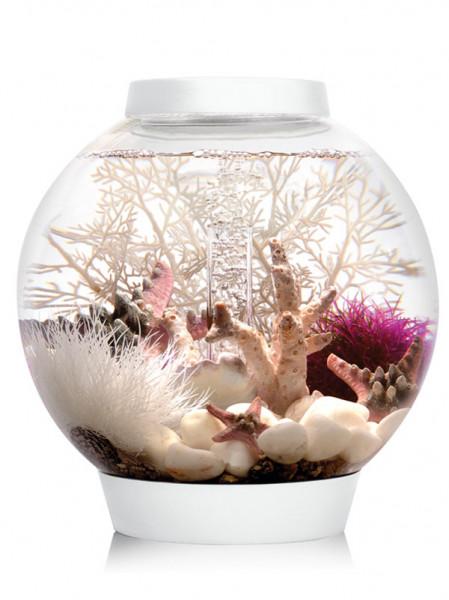 biOrb CLASSIC LED 15 weiß
