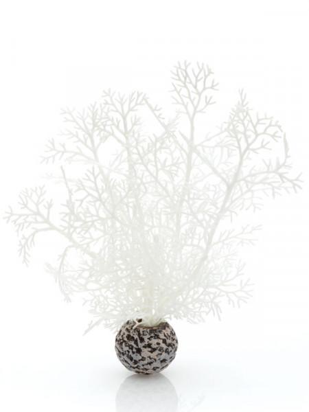 biOrb Hornkoralle klein weiß
