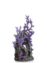 korallenriff-lila-1