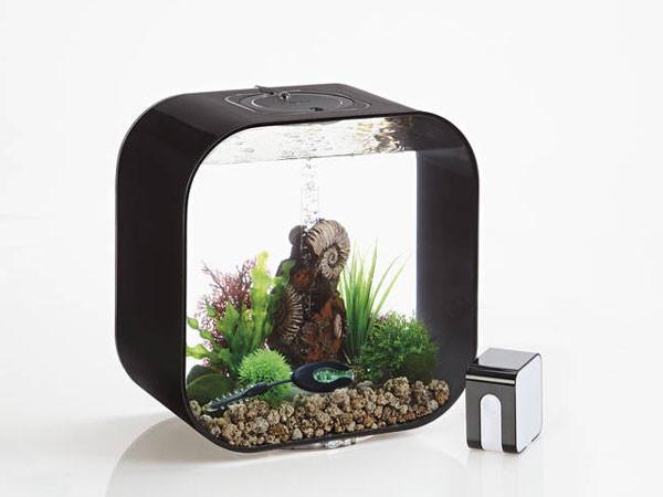 biOrb intelligenter Heizer mit Powerbox im Aquarium