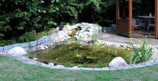 teichanlage | der-gartenteich, Gartenarbeit ideen