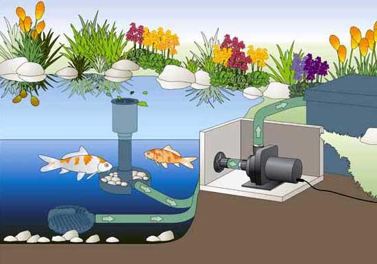 OASE Aquamax Dry